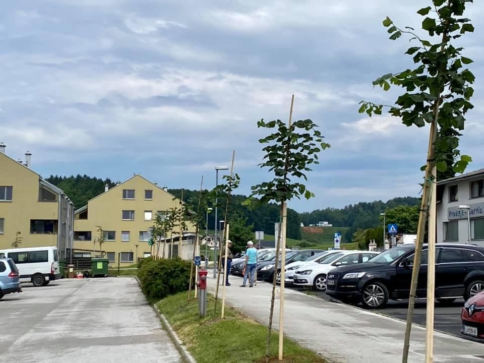 slovenija-lipe-5